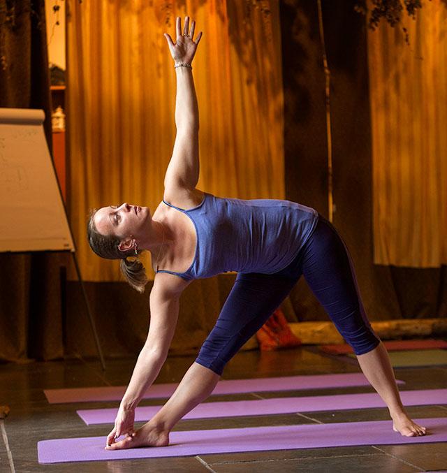 post graduate advanced yoga teacher training course