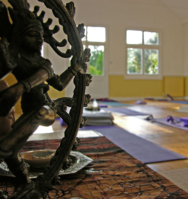 Devon School of Yoga Charities